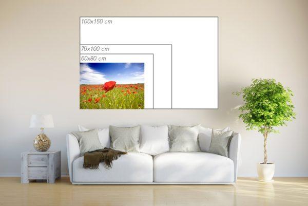 Fotoposter 50x70